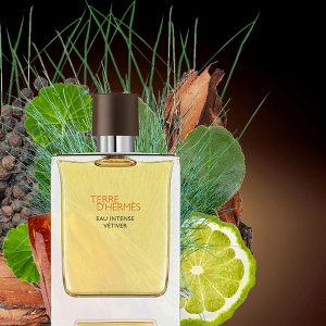 Nước Hoa Terre D'Hermes Eau Intense Vetiver Hermès 100ML 02